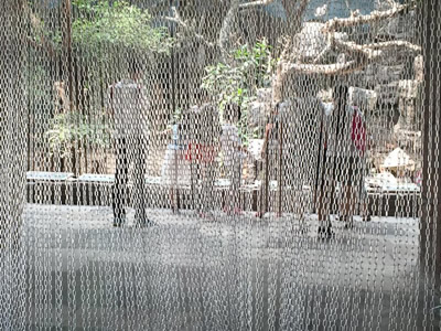 Stainless steel chain curtain as door curtain in the zoo, and inside of it, there are some people watching animals.